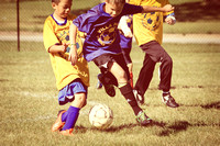 2013 Youth Sports